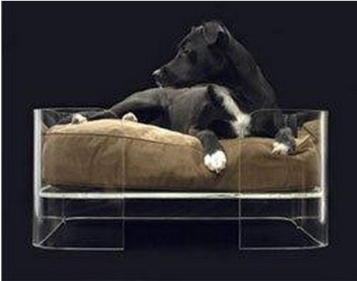 mobilier contemporain pour vos animaux architecture interieure conseil. Black Bedroom Furniture Sets. Home Design Ideas